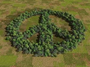 peace ppl